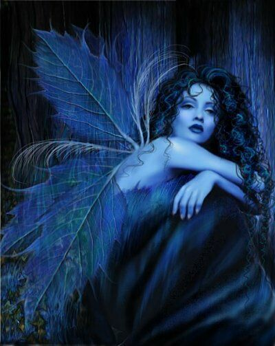 Image detail for -This is the fabulous blue fairy rose wings Wallpaper, Background ...