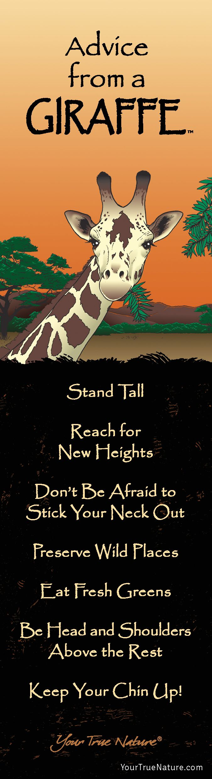 Beauty Advice from a Giraffe: Stand Tall! Your True Nature