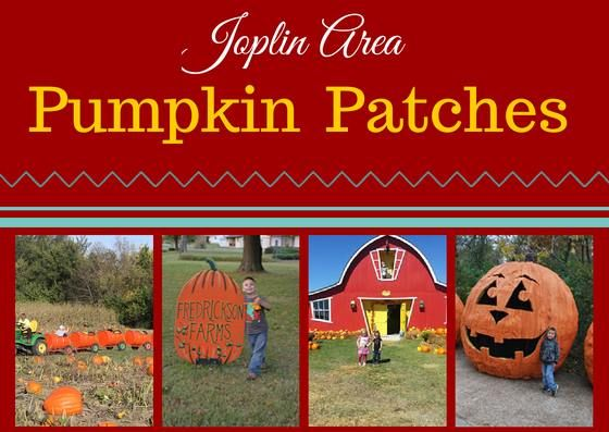 Joplin's Local Family Fun - Pumpkin Patches