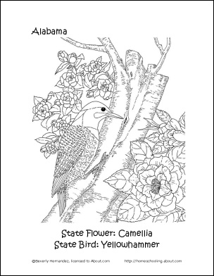 State Of Alabama Bird And Flower Coloring Sheet Alabama
