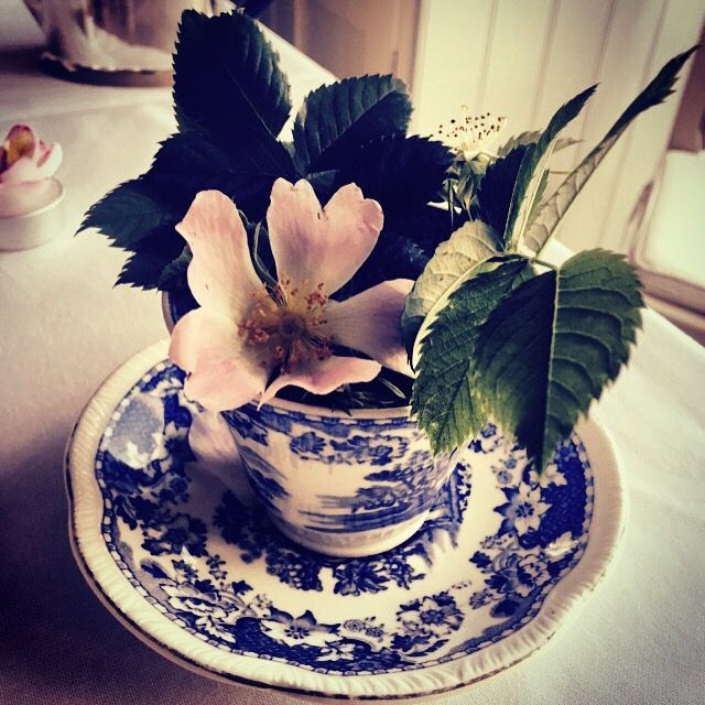 Wild flowers in a vintage teacup. Table decorations at our Garden Party for Cancer Research Uk, 2015