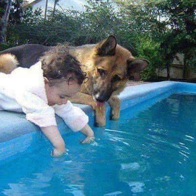 Kids and Dogs = Friends Forever