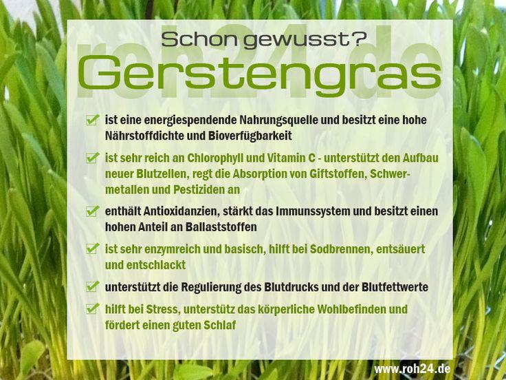 Schon gewusst?  Interessante Infos zu unserem Superfood Gerstengras das grüne Lebenselixier  https://www.roh24.de/rohkost/bio-gerstengraspulver-aus-deutscher-produktion