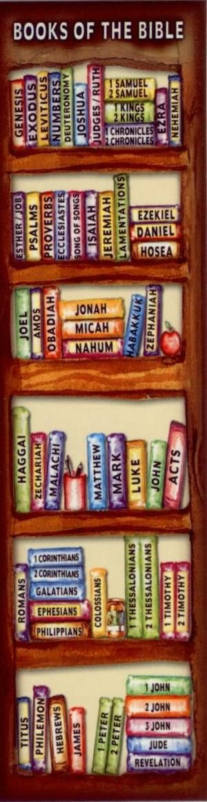 The Books of the Bible bookshelf. Love it