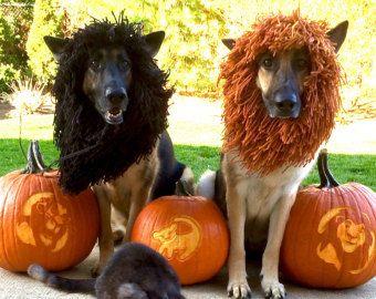 download crochet pattern 040 large dog yoda hat halloween hat for dogs halloween dog costume pdf tutorial