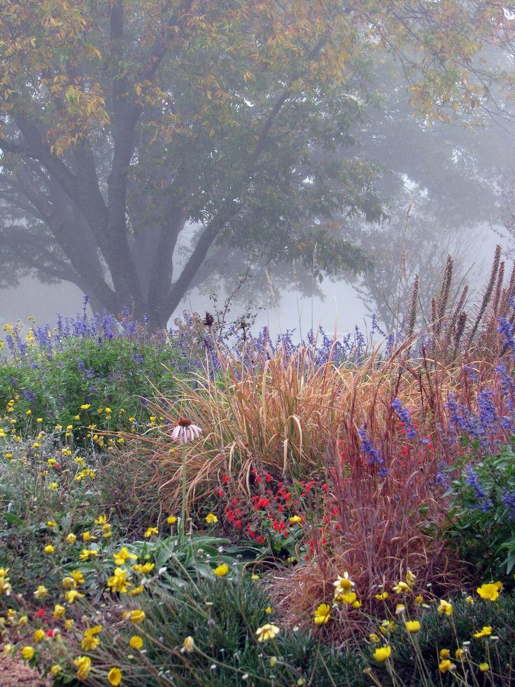 Plano Prairie Garden - November
