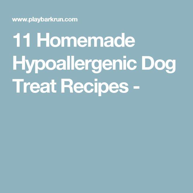 11 Homemade Hypoallergenic Dog Treat Recipes -