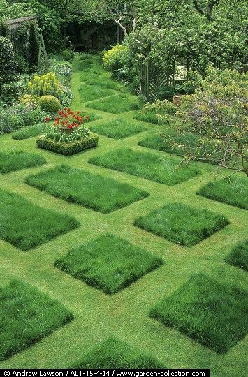 28 best ideas about lawn patterns on pinterest bob for Short grasses for landscaping