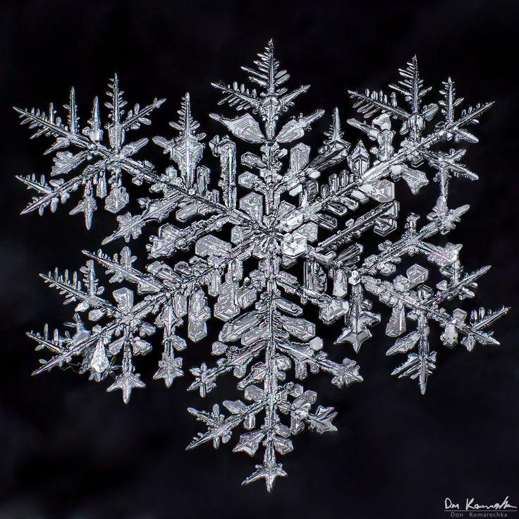 Snowflake macro photography by Don Komarechka 617
