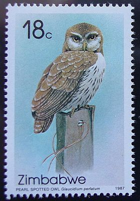Pearl Spotted Owl. Zimbabwe http://www.plexusowls.com/owls/owl_stamps.htm