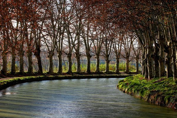 This photo is of the Canal du Midi in the south of France and was taken just outside of Beziers in Languedoc as a shortcut from the Mediterranean to the Atlantic in the 17th century.