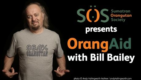 "BILL BAILEY heads-up a night of comedy dubbed ""OrangAid"" at Oxford's New Theatre on 3rd February 2014, with other acts including Rob Newman, Tony Law, Sara Pascoe and Paul Foot. All proceeds from the night will help support the scheme to protect orangutans and their rainforest homes. Tickets --> http://www.allgigs.co.uk/click/charityroundup/#billbailey_entry"