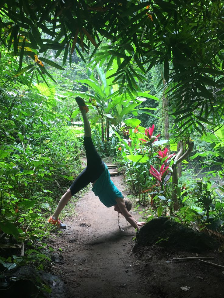 Pause for a minute to appreciate this beautiful lush tropical foliage! Hiking to the waterfall on our Bali Yoga Retreat tour day-  REFRESH, REFOCUS & REVIVE! Spark New Life by Creating Sacred Space Bali, Indonesia July 1st -7th 2018