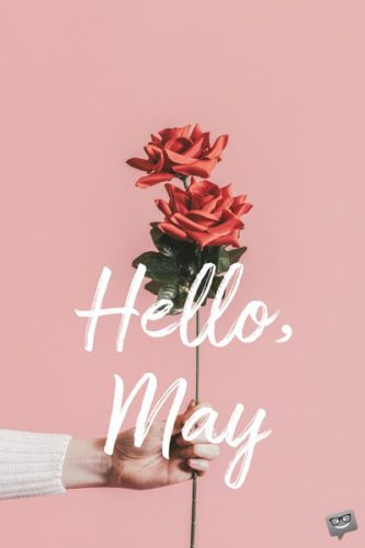 """Our floral collection of May cards is made to be shared to spread the joy that this month brings. We say a colorful big """"Hello, May! Hello May Quotes, Good Night Hug, New Month Wishes, New Month Quotes, Spring Quotes, Best Birthday Wishes, Months In A Year, 1 Year, Wallpaper Gallery"""