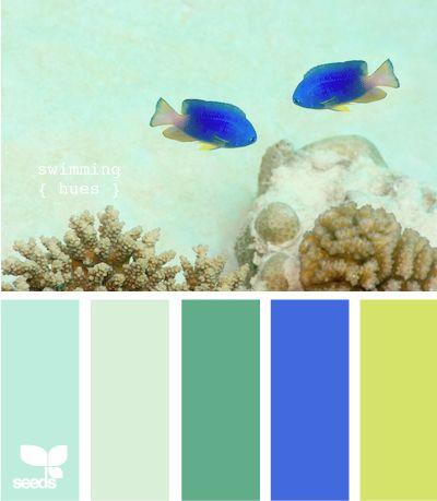 swimming hues