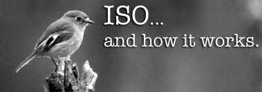 ISO - International Organization for Standardization that is the biggest organization in the world, to developing.... http://aldiablos.com/iso-in-india.php