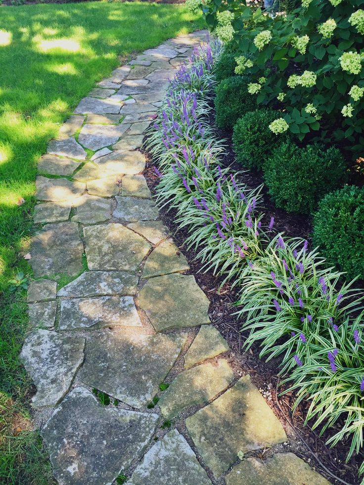 My liriope and boxwood lined pathway #BoxwoodLandscaping