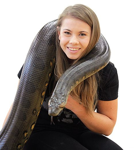 Ssssalsa! See What Happened When Bindi Irwin Brought an Anaconda to DWTS