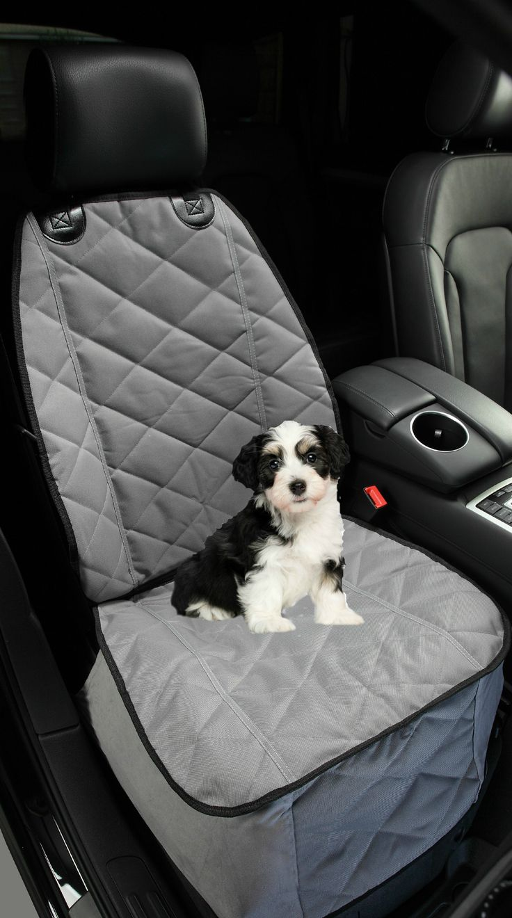 Great seat cover if you have a furry copilot! www.4Knines.com