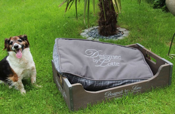 Hundebett * Designed by Lotte * 75 x 45 x 20cm * Holz * mit Kissen * Grau * | Haustierbedarf, Hunde, Betten | eBay!