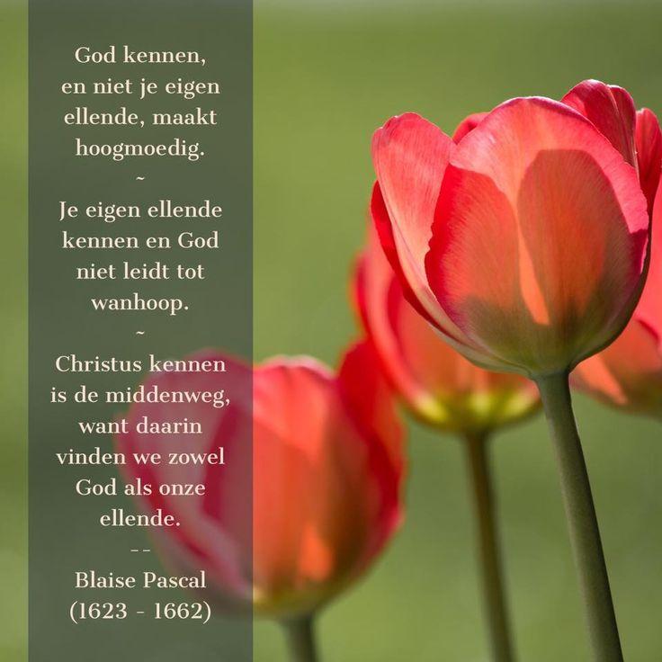 Christus kennen is de middenweg - Blaise Pascal (1623 - 1662)