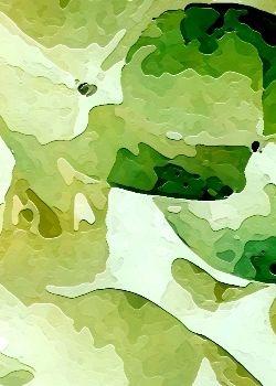 Tapis fait main, hand tuft de luxe 100% laine, collection Floral Fantasy dessin RR-04-29 Olive