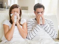 Při chřipce vsaďte na houby, česnek a bezinkovou šťávu