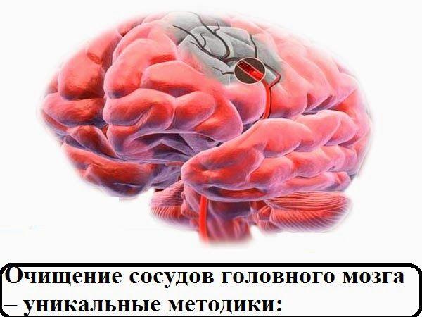 Всё самое интересное!: Очищение сосудов головного мозга