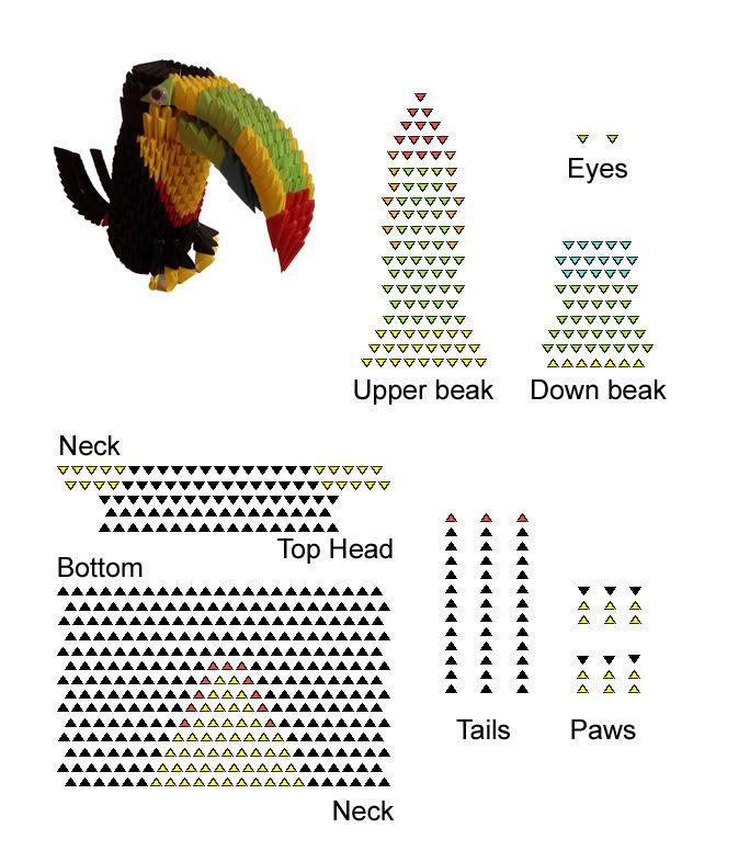 Toucan Bird (Chim Tu Căng) https://sites.google.com/site ... - photo#9
