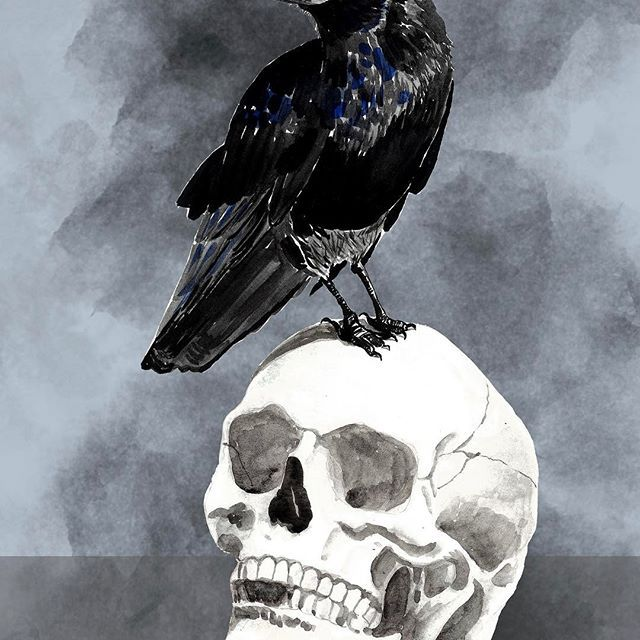 Feast for the Crows.  #crow #gameofthrones #got #skull