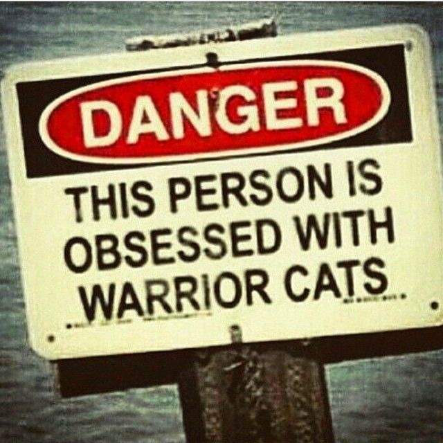 Danger this person is obssed with Warrior Cats... LOL, so true! =)