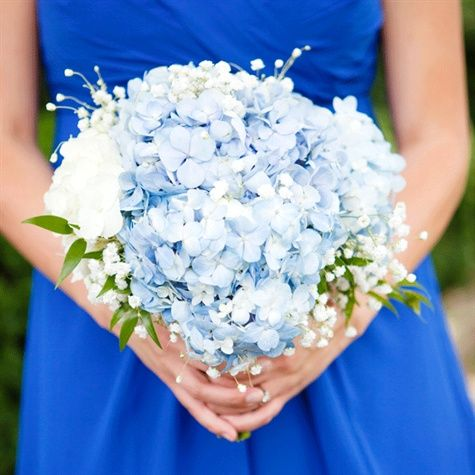 If you're looking for blue wedding flowers, blue hydrangea are a great choice! This bouquet showcases blue and white hydrangea, baby's breath, and some ruscus for greenery. Shop hydrangea, baby's breath, and ruscus year-round at GrowersBox.com!