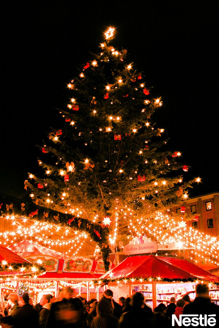 画像F: クリスマスツリー♪きれいですね。 クリスマスツリー/クリスマス/Christmas
