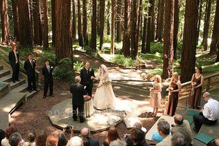 Outdoor Wedding Ceremony At Redwood Amphitheatre Berkeley Botanical Garden  California The Big Day