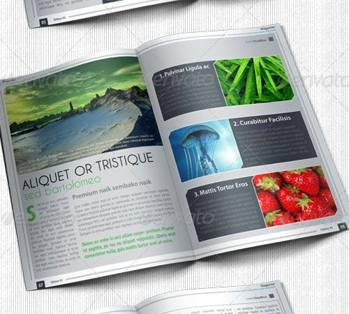 Magazine Layout Template For Word 80 Best Ad Layouts Images Infographic Page