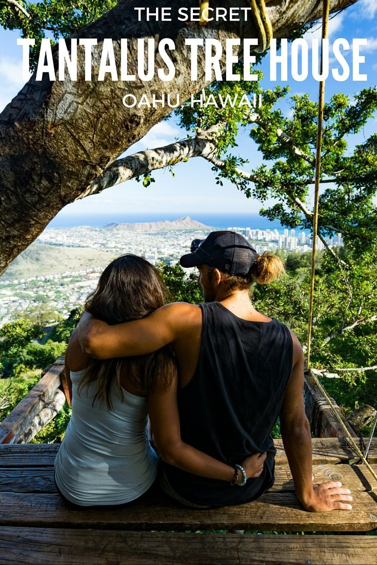 The Tantalus treehouse is an enchanting lookout that offers panoramic views of Honolulu and Diamond Head. Like the Mermaid Caves, the location of the Tantalus treehouse is a mystery to most visitors.