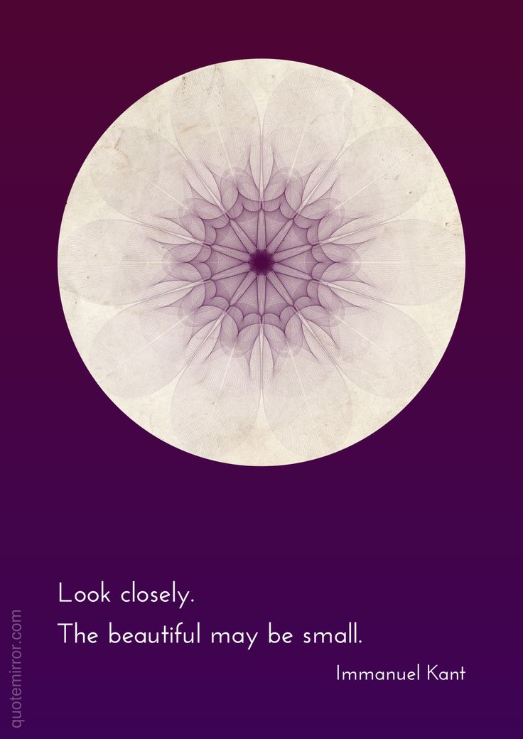 Look closely. The beautiful may be small. –Immanuel Kant #beauty #discover http://www.quotemirror.com/immanuel-kant-collection-1/look-closely/