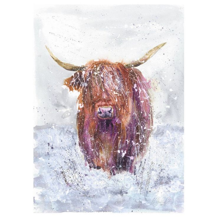 Collectable Large A2 GICLEE FINE ART  Winter Highland Cow  watercolour art print by artist nicola jane rowles by NicolaJaneRowlesART on Etsy https://www.etsy.com/uk/listing/500534565/collectable-large-a2-giclee-fine-art