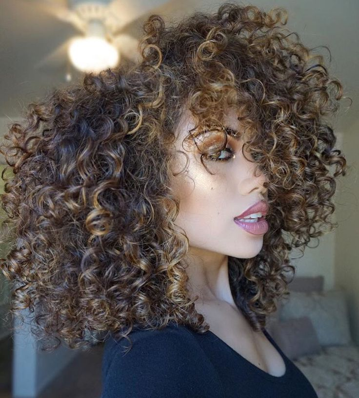 Highlights on curly hair the best curly hair 2017 best 25 highlights curly hair ideas on pmusecretfo Image collections