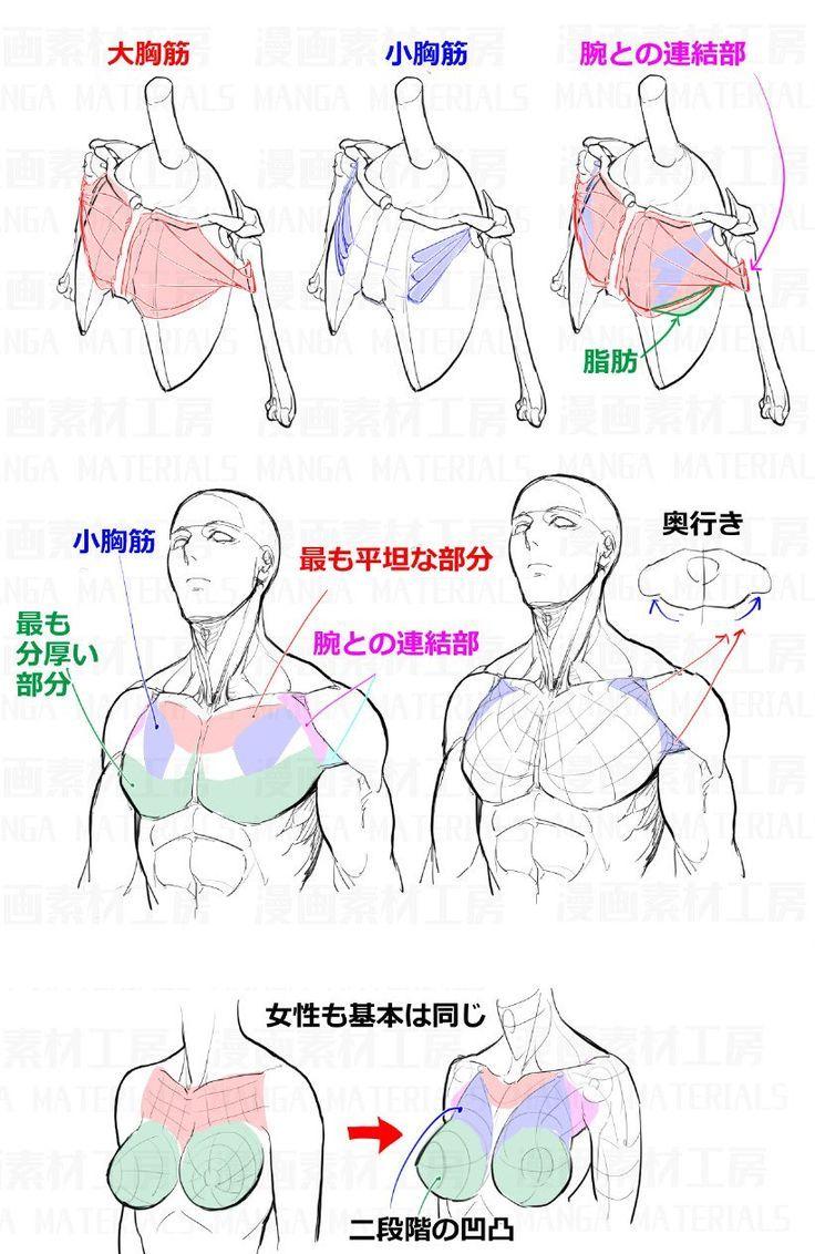 Klicke Um Das Bild Zu Sehen How To Draw Mans And Woman -2633