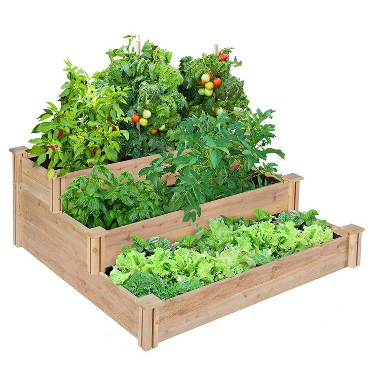 17 Best Ideas About Raised Garden Bed Kits On Pinterest