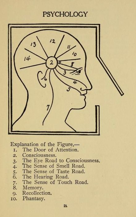 psychology and the senses Here are grounding techniques to try  psychology theories  grounding techniques often use the five senses—sound, touch, smell, taste, and sight—to.
