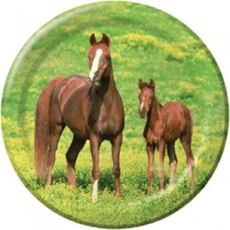 Horse Party Supplies, Wild Horses Dinner Plates, Horse Plates