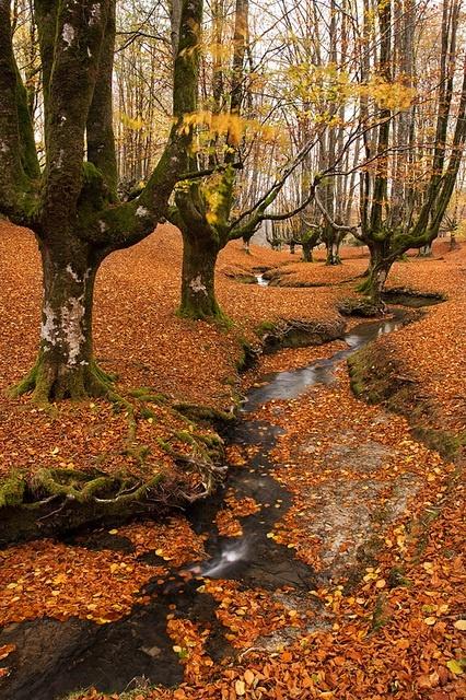 Basque Country - Euskal Herria