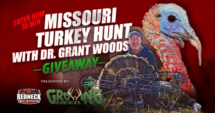 Chase a few hundred thunder chickens with Dr. Grant Woods and the GrowingDeer.TV camera crew April 29-30th on Redneck Hunting Blinds property in Southwest Missouri. All expenses paid including hunting tags, lodging, meals, and travel costs. Want in? Sign up today. Winner notified by March 30th.