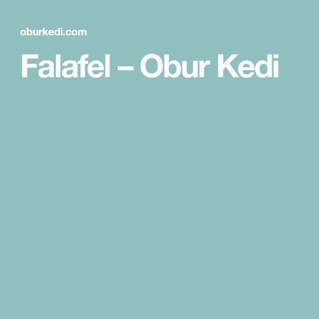 Falafel – Obur Kedi