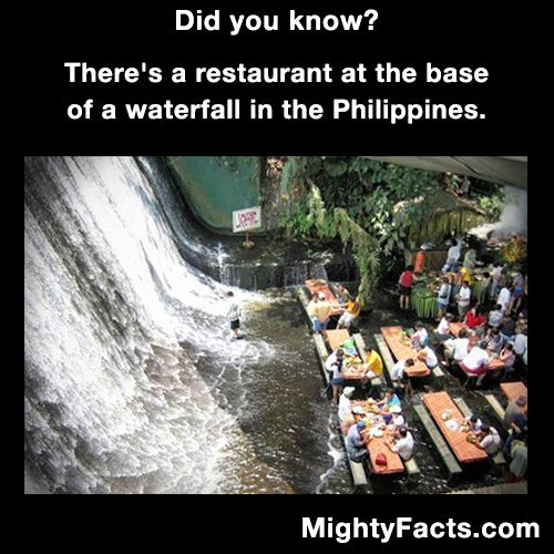 3067 best mighty facts images on pinterest fun facts for Waterfall restaurant design