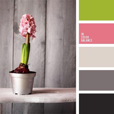 color azul jacinto, color casi negro, colores para la decoración, elección del color, gris oscuro, matices de color gris sonrosado, matices de colores pastel, rosado, rosado y verde lechuga, tonos grises, verde lechuga suave.