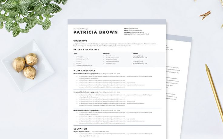Best Creative Resumes Beauteous 17 Best Resume Templates Images On Pinterest  Resume Templates .