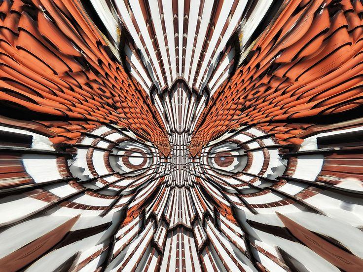 """ćma-motyl dzienny""""należący do cyklu wystawowego""""efekt motyla"""" wysokiej jakości wydruk na materiale PCV (90x70 cm)  obraz o wysokich walorach -estetycznych i wrażeniach wizualnych  przeznaczony bezpośrednio do zawieszenia lub podklejenia  ........................................................"""